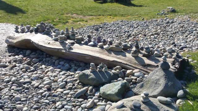A rocky beach with a large piece of driftwood and stacks of stones balanced on the driftwood.