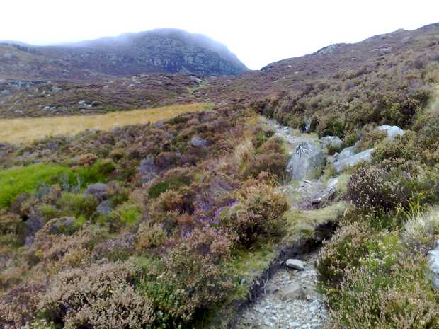 Across the Rhinogydd - Rhinog Fawr and Llyn Du.