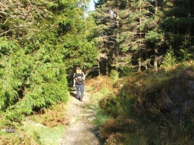 Walk up Moel Siabod from Pont Cyfyng