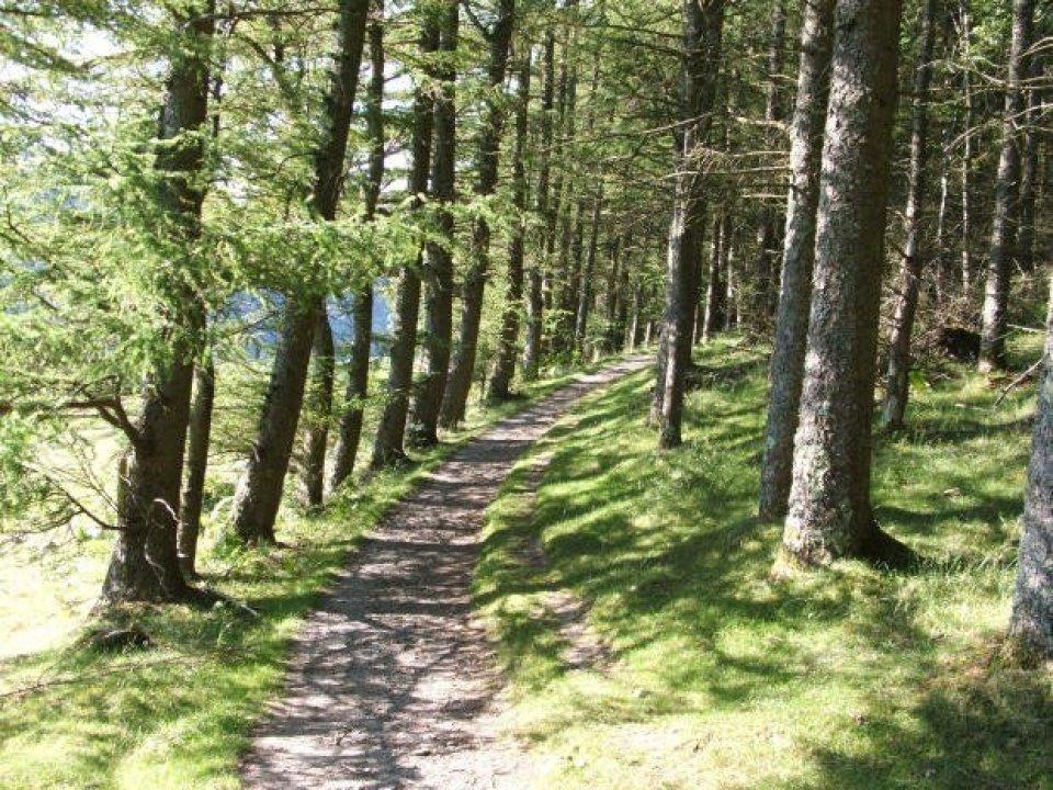 Walk across the Carneddau - Aber to Trefriw