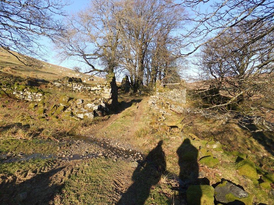 Walk up Arenig Fach From Llyn Celyn