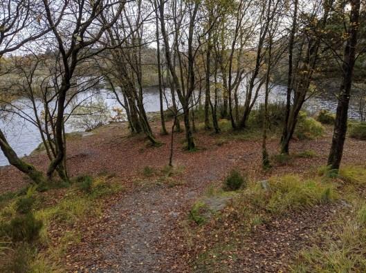 A Walk around Betws-y-coed and Llyn Elsi