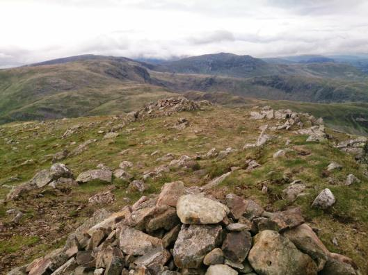 redscrees37_960