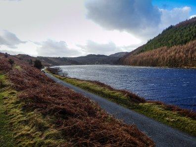 Gwydr Forest Walk
