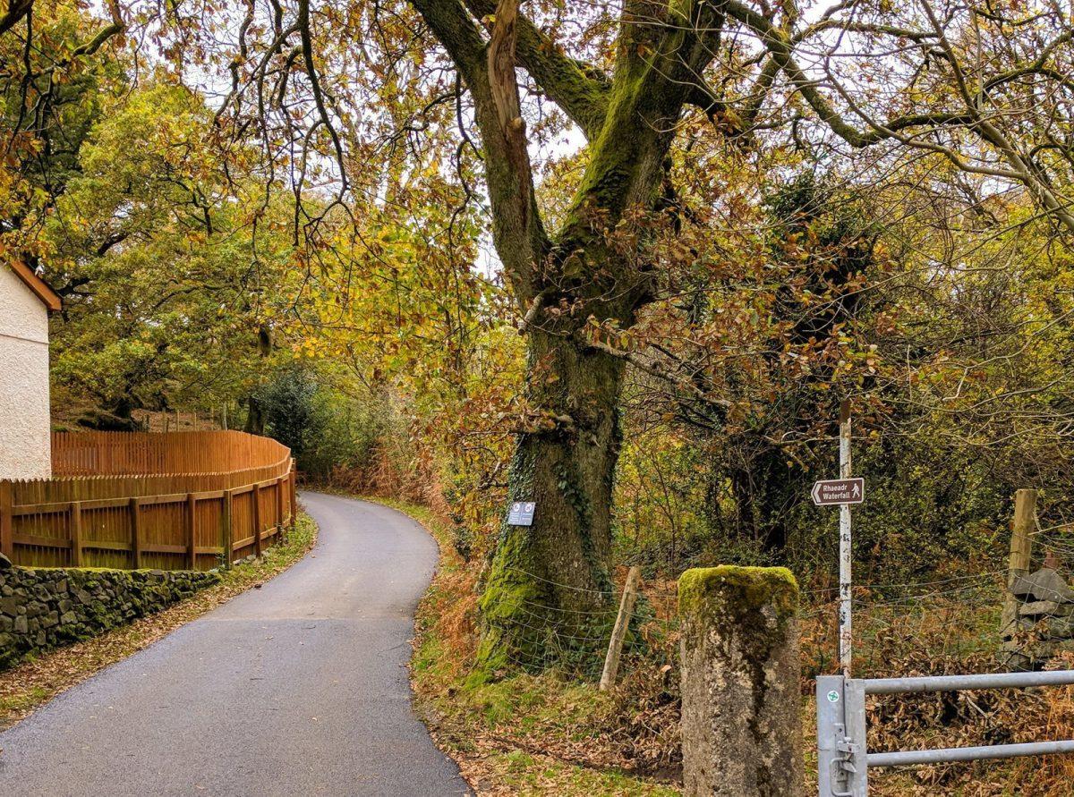 Walk to the Llanberis Waterfall Ceunant Mawr
