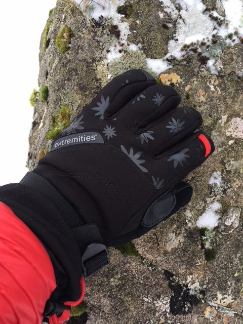 Extremities Women's Primaloft Mountain Glove