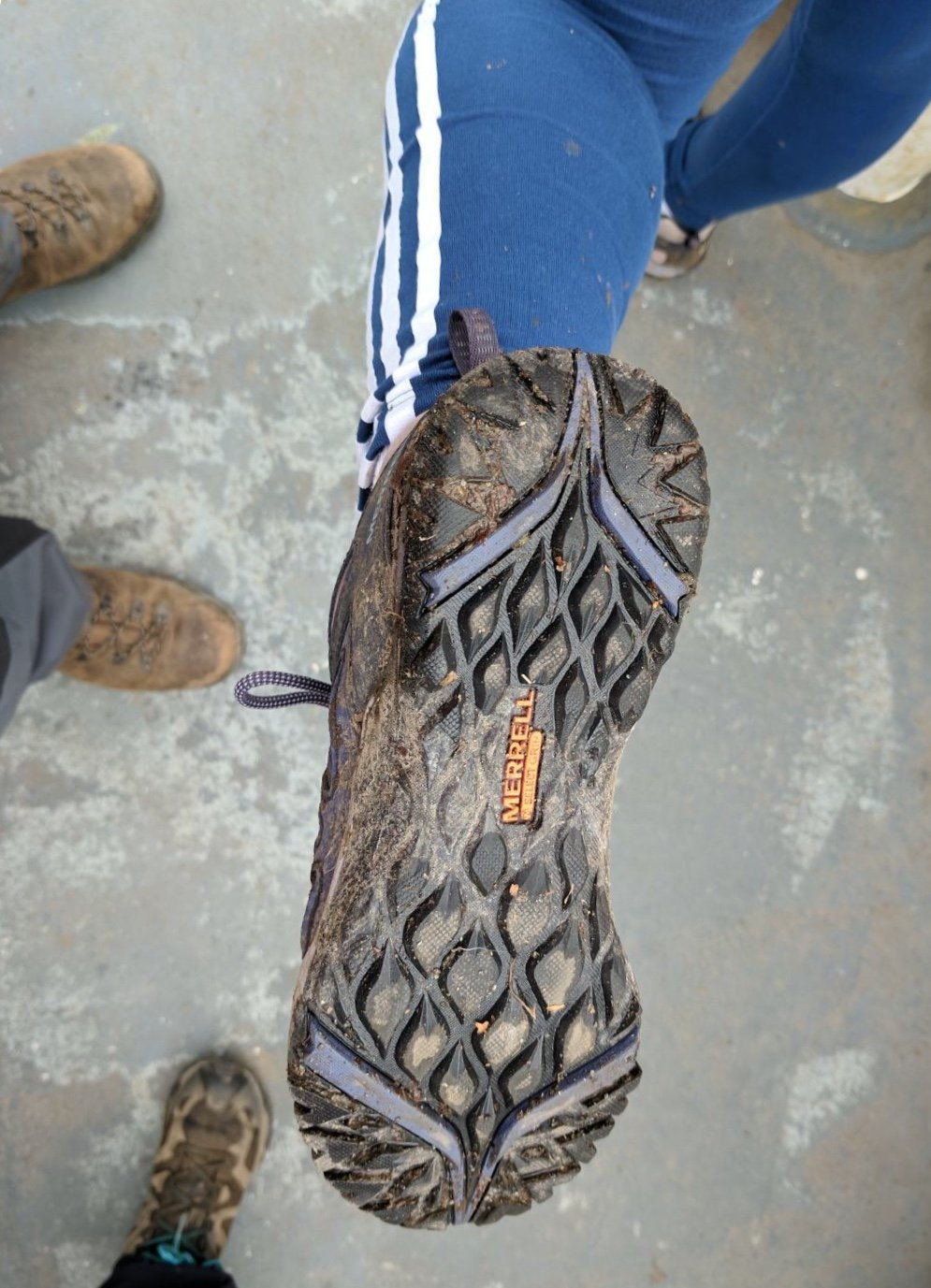 f11c5c6d14 Merrell Siren Sport Q2 Ladies Walking Shoes Review | Footwear | Mud ...