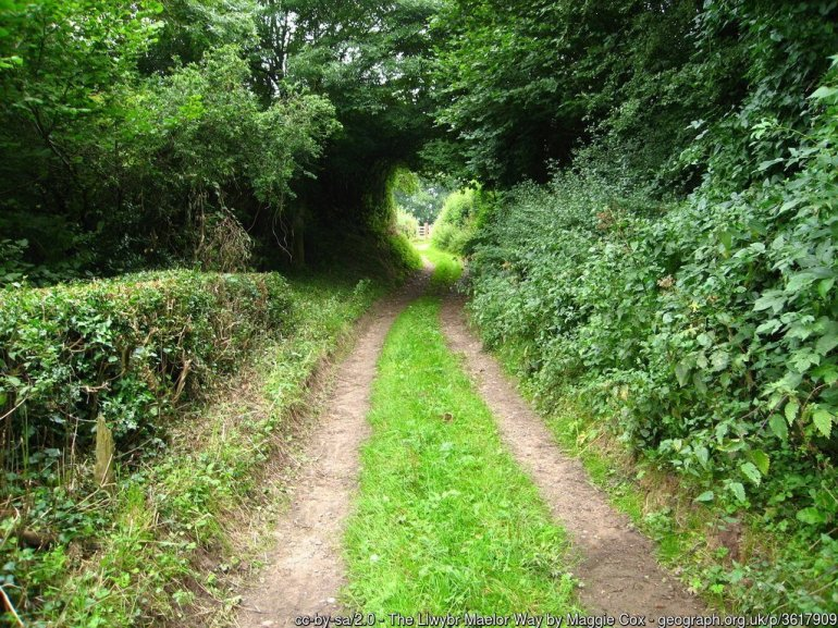 The Maelor Way