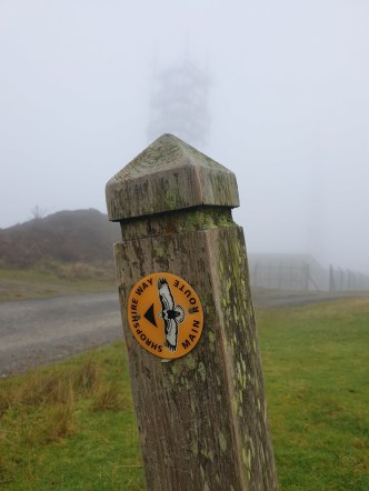 Brown_Clee_Hill_23