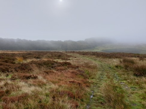 Brown_Clee_Hill_33