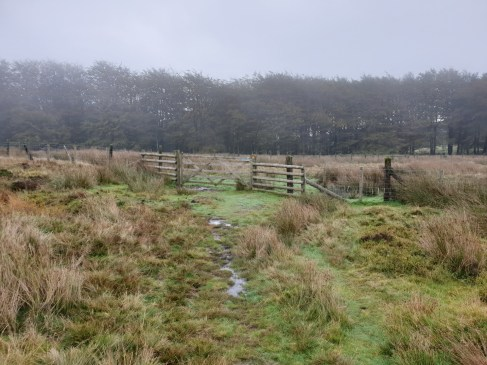 Brown_Clee_Hill_34