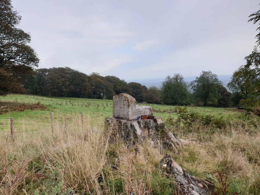 Brown_Clee_Hill_51