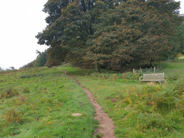 Brown_Clee_Hill_6