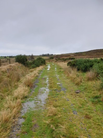 Stiperstones_11