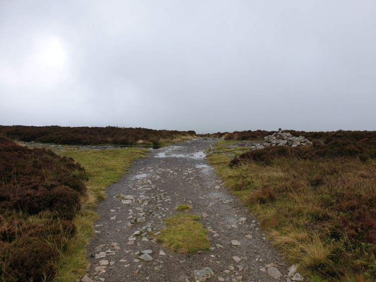 Stiperstones_20