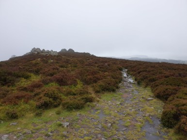 Stiperstones_30