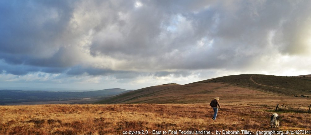 East to Foel Feddau and the Golden Road The Golden Road is used to describe the ancient upland pathway used by our prehistoric ancestors in order to avoid the densely wooded and wet lowlands