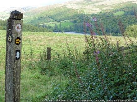 Glyndwr's Way near Llanwddyn
