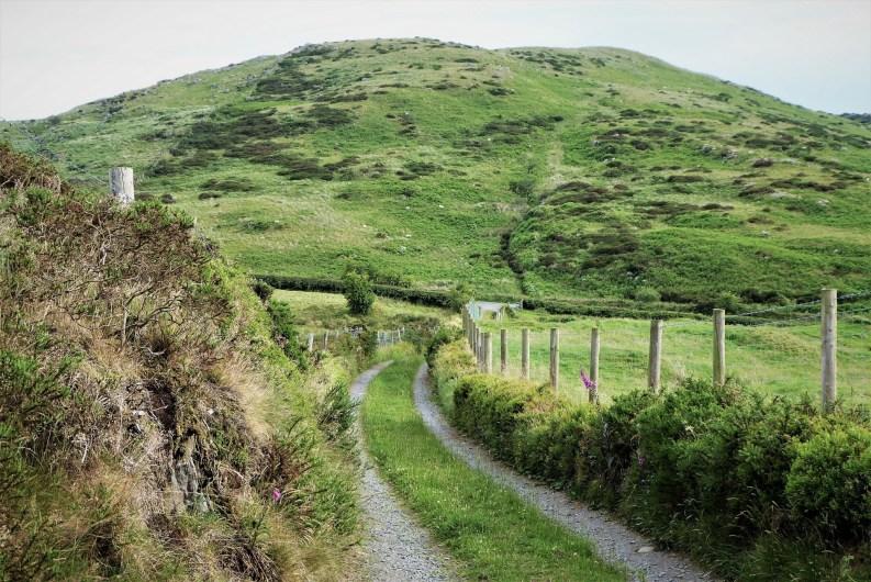 Walk up Cratlieve