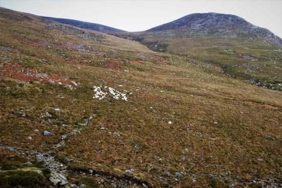 13.3 Chimney Rock Mountain via Carr's Face Quarry