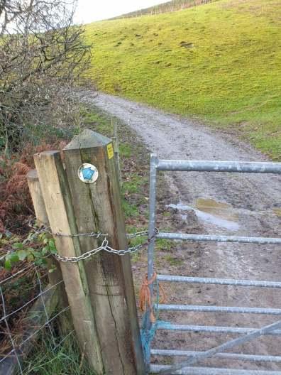 Walk up Knolls - Long Mynd Shropshire Walk