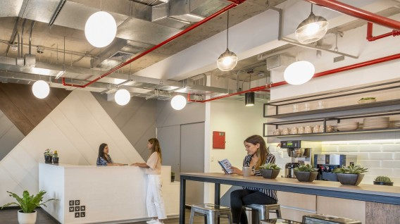 El impacto del coworking en las empresas consolidadas