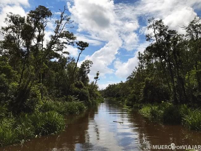 Nuestro viaje nos llevo 3 días recorriendo el río en Klotok