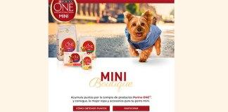 Consigue ropa y accesorios para tu perro con Purina One