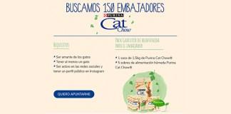 Purina Cat Chow busca 150 embajadores