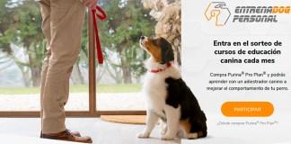 Purina sortea cursos de educación canina cada mes