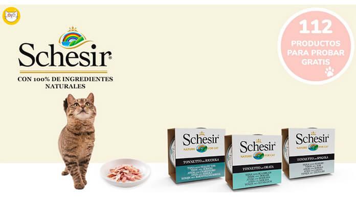Wamiz da a probar gratis latas de comida para gato Schesir