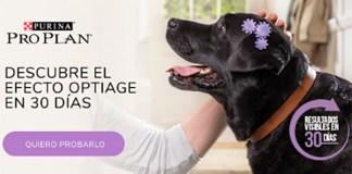 Prueba gratis Purina Pro Plan Optiage