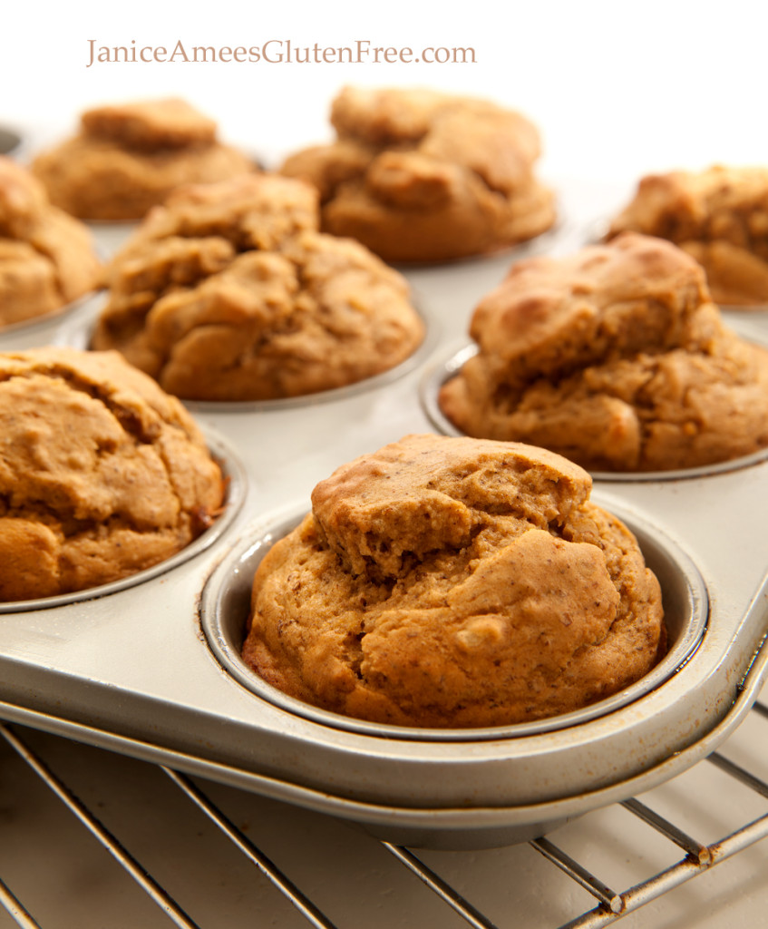 AMAZING Gluten-Free Banana Nut Protein Muffins by Janice Amee's Gluten Free! Her recipes are so fantastic! Check out more on her blog www.JaniceAmeesGlutenFree.com