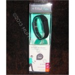 Fitbit Flex – Eureka! First Impressions Review