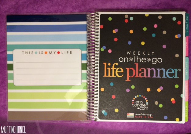 muffinchanel erin condoner life planner 2015 review stripes covers clips calendar wash tape spiral bound 2014 vs 2015 party pops stripes zen gems jolly jester ruler cover