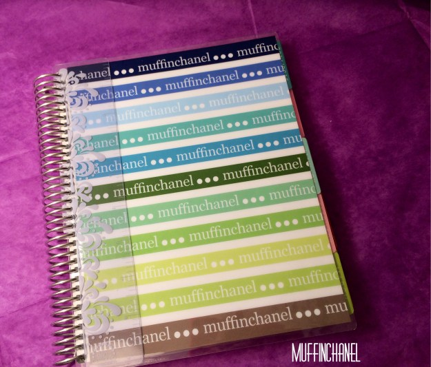 muffinchanel erin condoner life planner 2015 review stripes covers clips calendar wash tape spiral bound 2014 vs 2015 party pops stripes zen gems jolly jester
