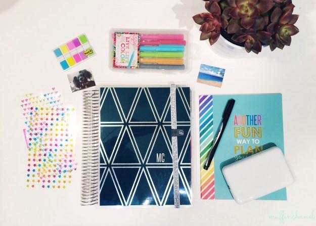 muffinchanel erin condren accessories planning decoration pens stickers polaroid zip photo printer