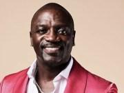 akon richest musicians in africa