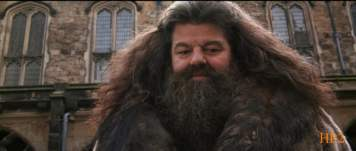 Movie2 - 9th shot - Trio knows about Hagrid's past2