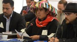 Fotografía: De Comisión Interamericana de Derechos Humanos - https://www.flickr.com/photos/cidh/22149914109/in/album-72157660116029221/, CC BY 2.0, https://commons.wikimedia.org/w/index.php?curid=48333298