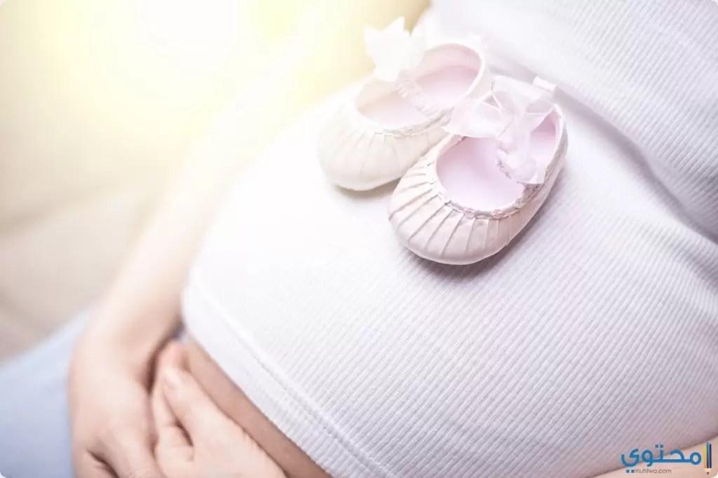 أطعمة تساعد على الحمل في بنت