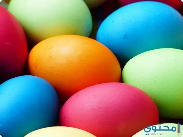 رؤية البيض في المنام موقع محتوى