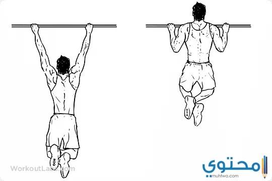 اقوي تمرينات عضلات الظهر بالصور 2019 موقع محتوى
