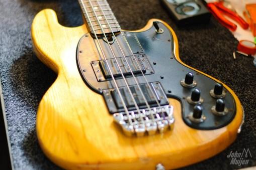 Wal-Bass-0301
