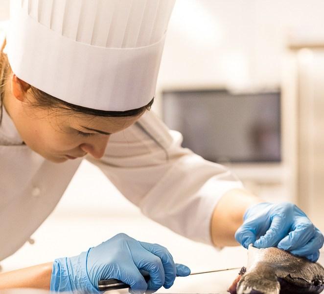 Nuorten kokkien kilpailu