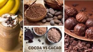 cacao o cocoa