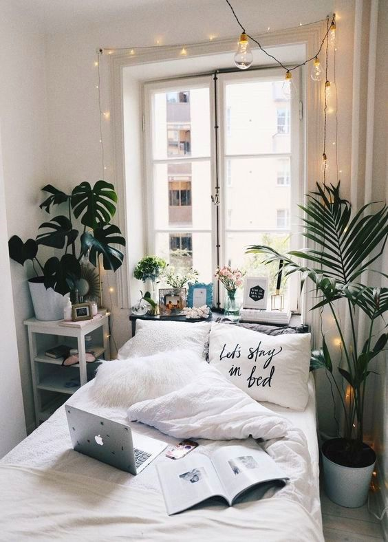 plantas para cuarto