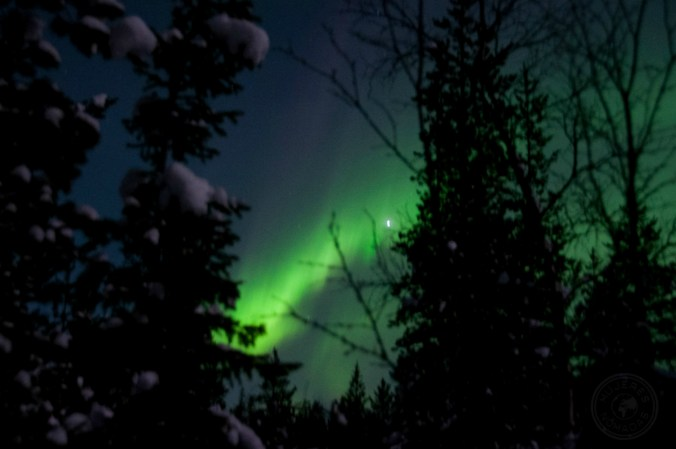Auroras boreales. Foto: Simon Schönenberger.