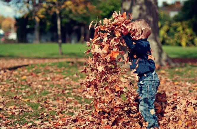 Nuestros hijos en el parque