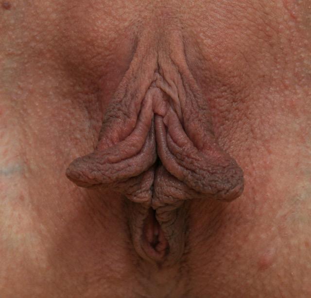 Bucetuda Labios Grandes (6)